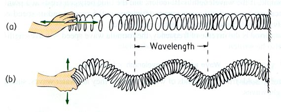 Gelombang Mekanik Mechanical Wave Artikelnesia