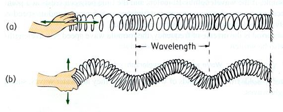 Gelombang Mekanik Mechanical Wave Artikelnesia